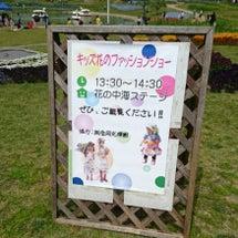 国営明石海峡公園 春…