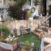 お庭のドッグランのリノベーションの画像
