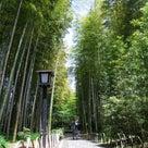 竹林の路の記事より