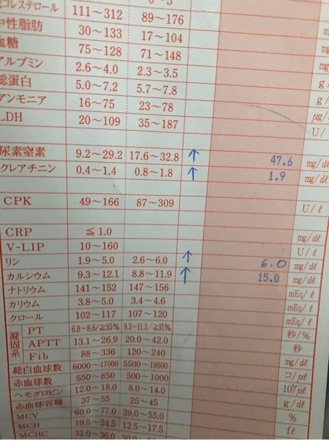 {C22D571C-BF4A-486F-AAB3-C8F9A1CEEE2B}