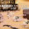 5/26~5/28のスペシャルセール 只今より御予約開始!!!の画像