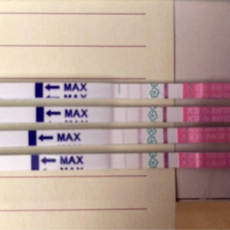 検査 薬 した 排卵 妊娠