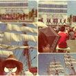 たまの港フェスティバ…
