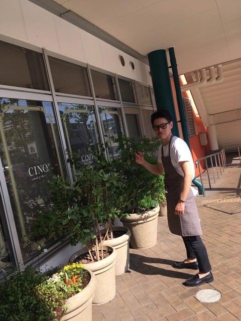 植木職人登場。