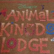 ディズニー・アニマルキングダム・ロッジに到着しました(^_^)