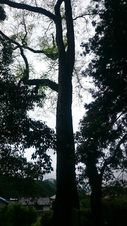 葛城神社(橋本市柱本) | ゆきまるのブログ