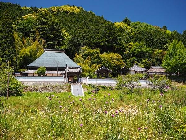 モリよしのブログ八塔寺ふるさと村