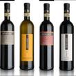 ■イタリアワイン試飲…