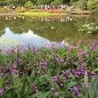 皇居東御苑 二の丸庭…