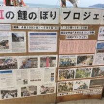 357→鯉のぼりプロ…