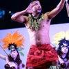 タヒチアンダンスショーステージ裏 テマラマタヒチの画像