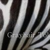 待望の⁉︎日本人の白髪スタイル、激写か?? 三越グレイヘア イベントにての画像
