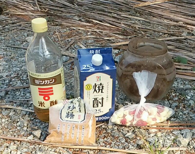 9fd576a908 散布する時に木酢液を加える方法もあるが、木酢液は発がん性等も指摘されていて、体への影響が未知数なので、私は自然農薬には使っていない。