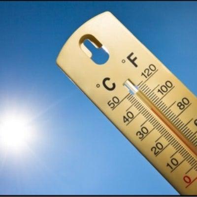 暑い夏でもどんなボブだと涼しくすごせる?の記事に添付されている画像