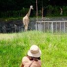 オトナ女子で東山動物へお写ん歩デート〜動物編の記事より