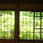 江戸東京たてもの園に…