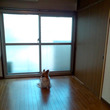 札幌に引っ越して4年…