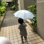 雨のお出かけ