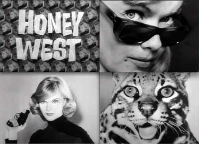 Honey West 1965TV