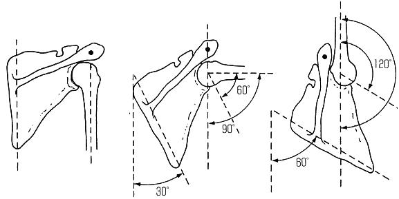 「肩甲回旋リズム」の画像検索結果