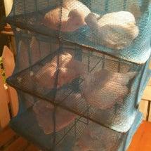 鳥取県産ヒナ鶏のロー…