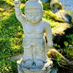 画像 【愛知】龍光山「瑞雲寺」でいただいたステキな【飛びだす御朱印】~追加掲載版~ の記事より 22つ目