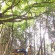 三峯神社✨part3