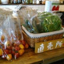 お野菜売ってます
