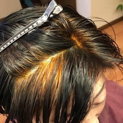 白髪はヘナの2度染めが完ぺきだが他にも効果が、、、の記事に添付されている画像