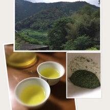 お茶の新しい飲み方体…