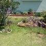 S様邸芝生のお庭リガ…