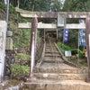 念願の武蔵神社に!の画像