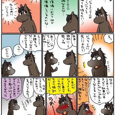 菊花賞 2015の記事に添付されている画像