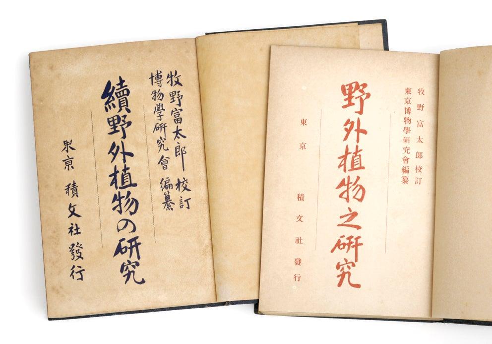 mizusumashi-tei みずすまし亭通信村越三千男の野外植物の研究