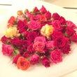 【会員様限定】薔薇イ…