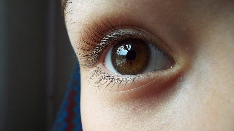 「瞳孔」の画像検索結果