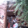 私たちの清掃活動が周囲に影響を与え始めている・・・!?の画像