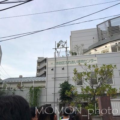 日本で1番小さな植物園で蛍鑑賞の記事に添付されている画像