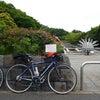2017.06.18 朝練~大井ふ頭サイクリングの画像