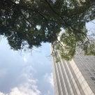 補助金申請と天空ランチな新宿WESTの記事より