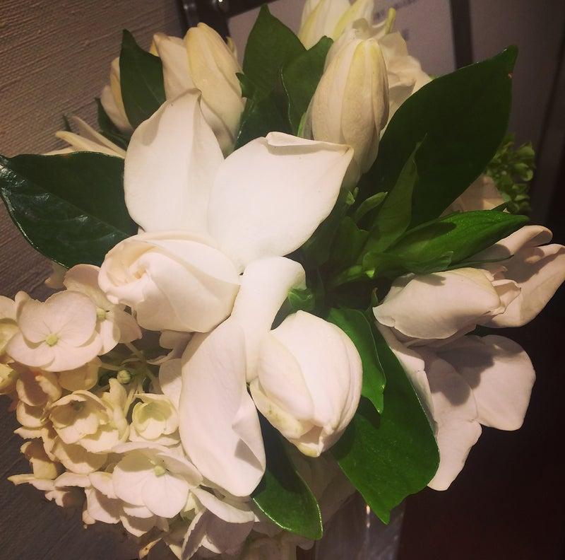 20170620_今日のお花