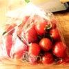 有機野菜 産地直送 可愛すぎる ミニトマトの画像