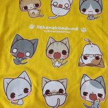 可愛いねこTシャツ