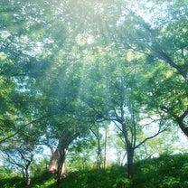 幸福を感じるための「腸菌トレ」!の記事に添付されている画像