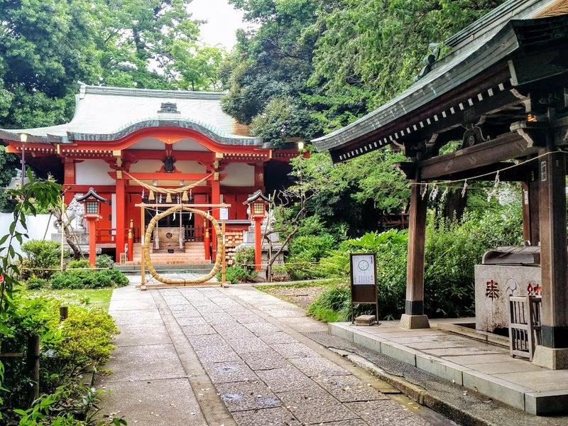半年分のケガレをお清め!自由が丘エリア神社の「茅の輪」をくぐって『夏越の大祓い』