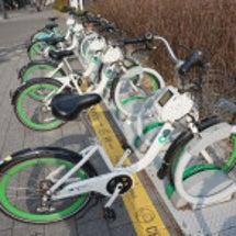 서울 자전거 따릉이