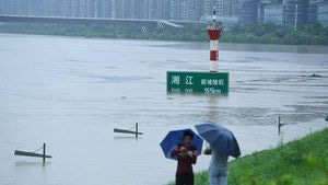 大雨で洪水発生、現場に駆けつけ...
