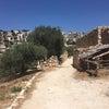 ナザレ村の画像