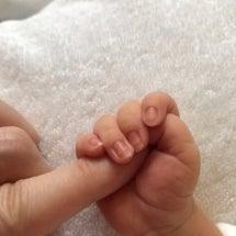 第二子産まれました