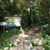 隈の井・唐人津城遊歩道は絶景と癒しのパワースポット♪式根島の画像